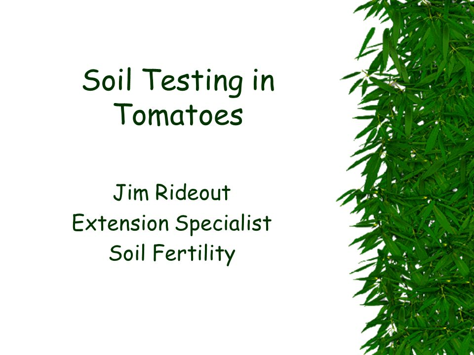 Soil Testing in Tomatoes