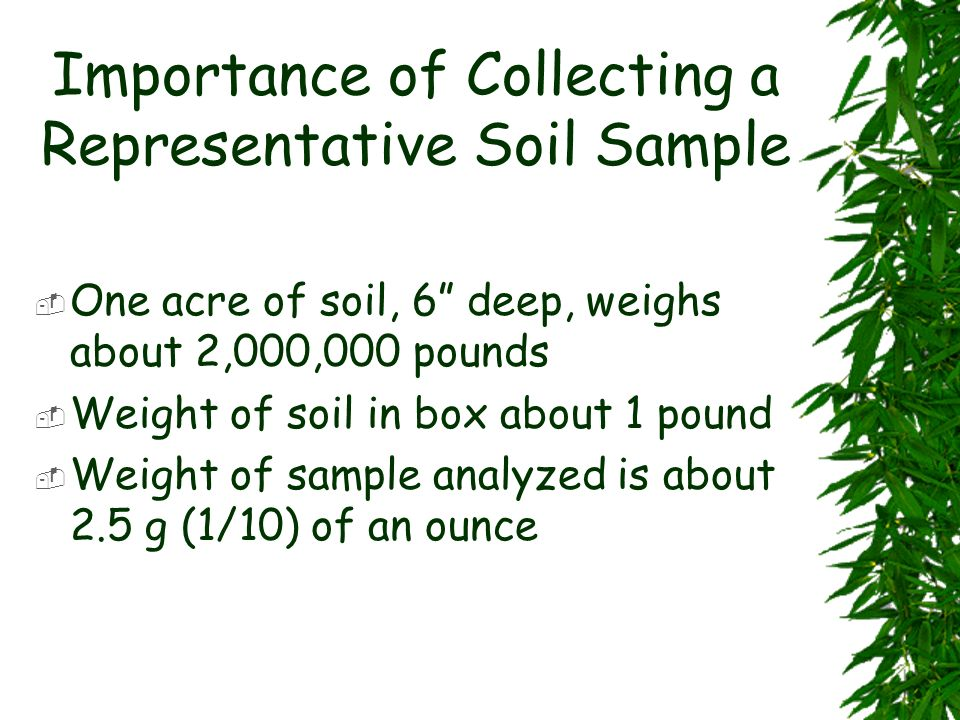 Importance of Collecting a Representative Soil Sample