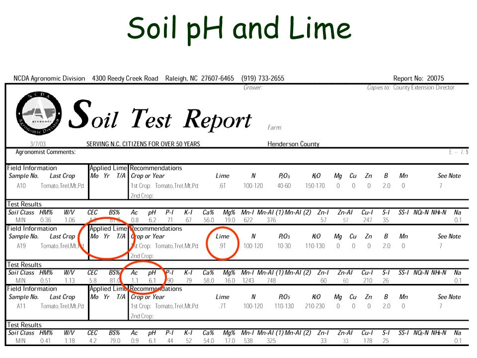 Soil pH and Lime