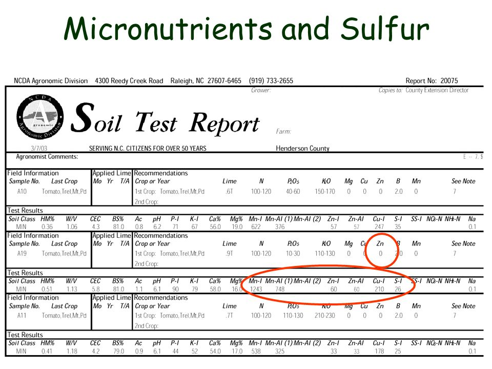 Micronutrients and Sulfur