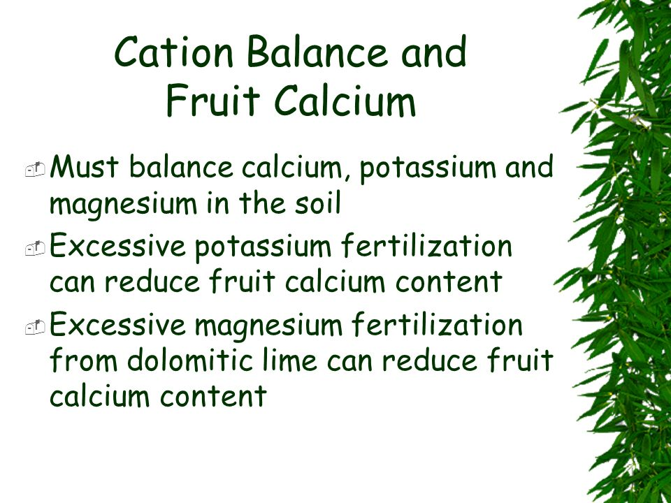 Cation Balance and Fruit Calcium