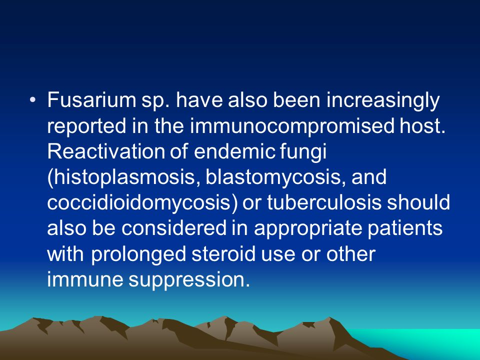 Fusarium sp. have also been increasingly reported in the immunocompromised host.