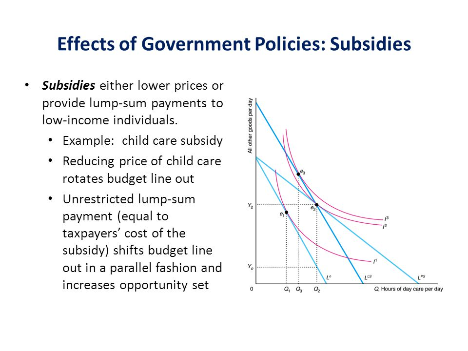 Effects of Government Policies: Subsidies