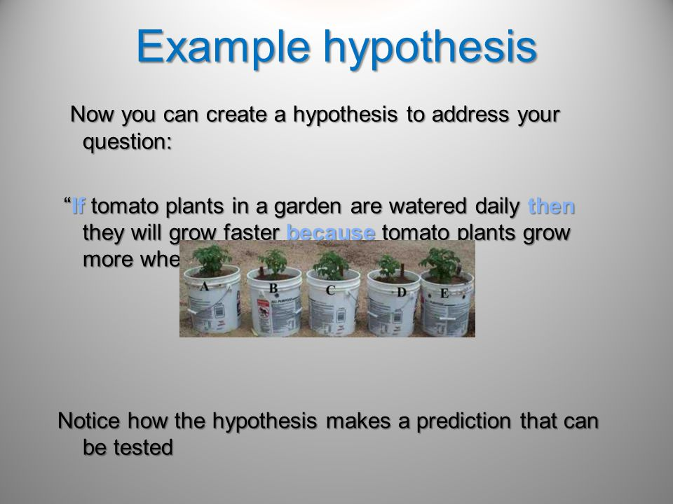 Example hypothesis Now you can create a hypothesis to address your question: