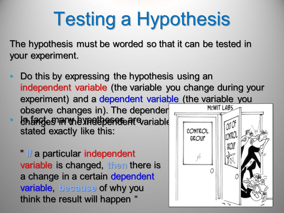 Testing a Hypothesis The hypothesis must be worded so that it can be tested in your experiment.