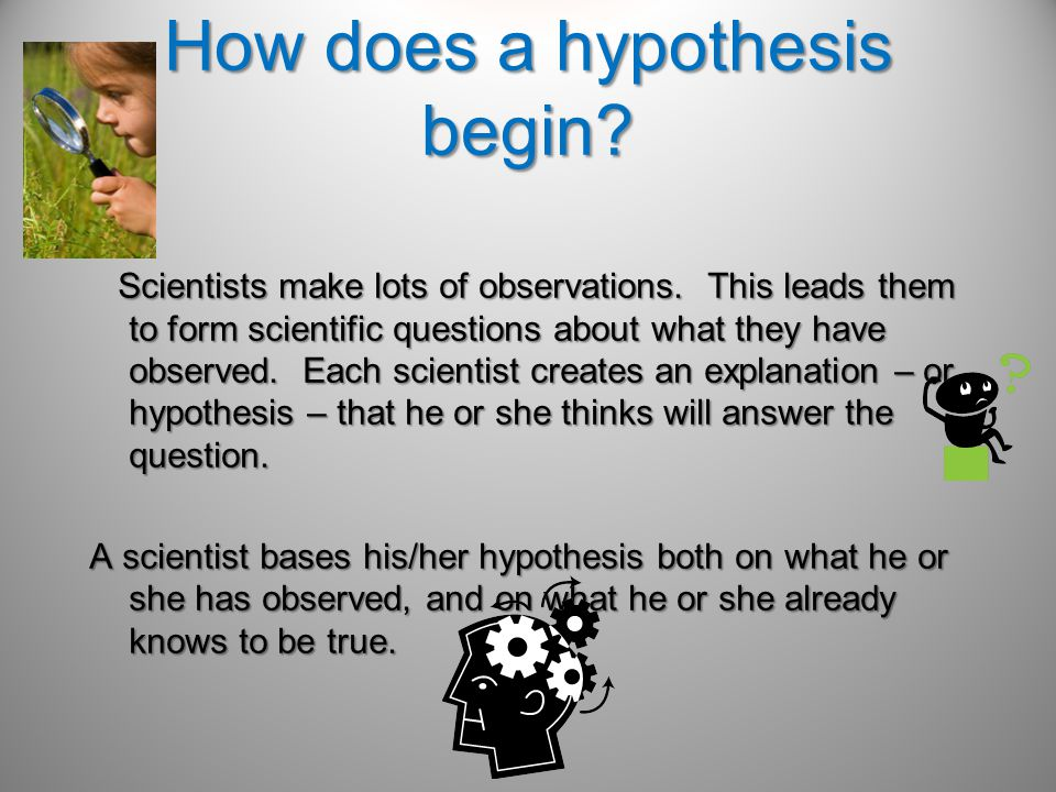 How does a hypothesis begin