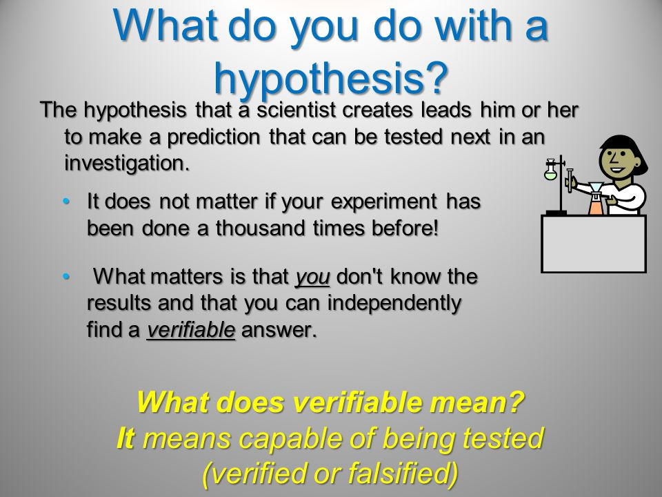 What do you do with a hypothesis