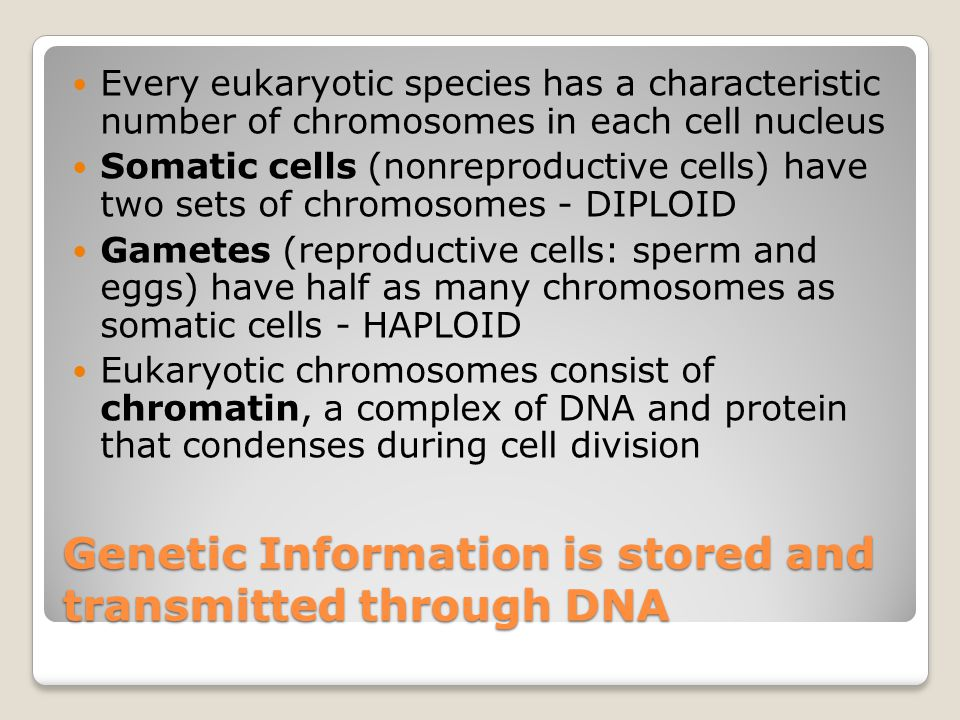 Genetic Information is stored and transmitted through DNA
