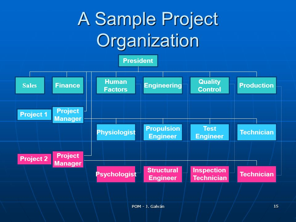 A Sample Project Organization