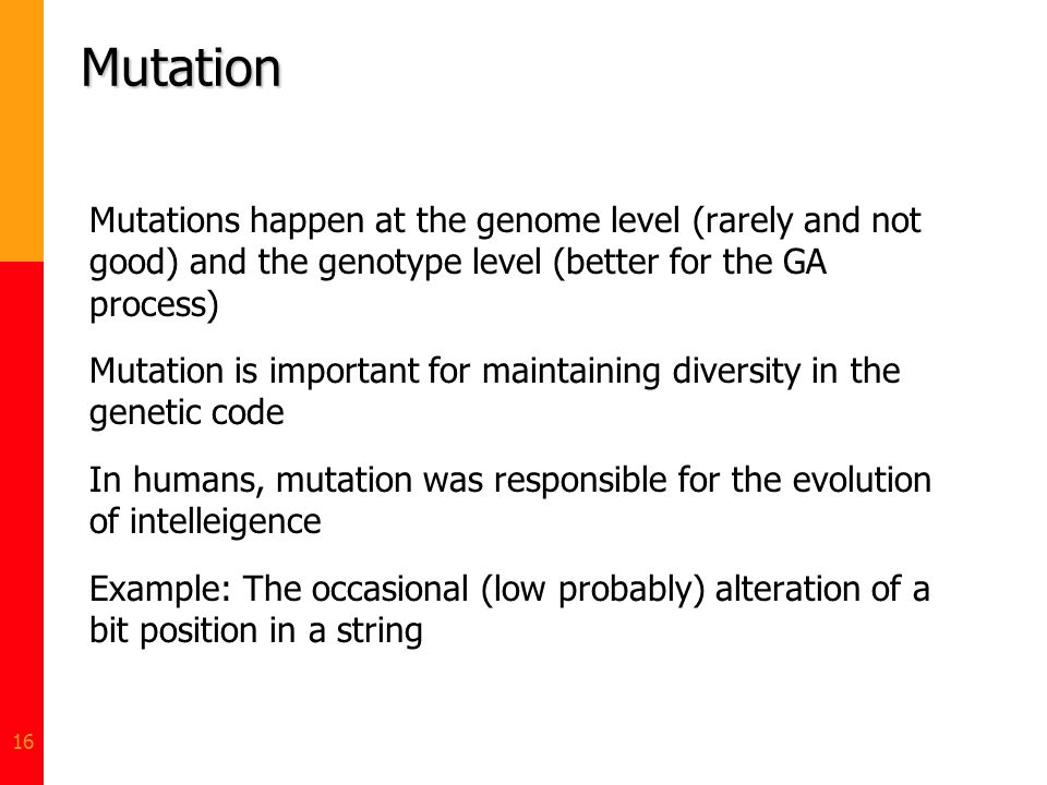 Mutation Mutations happen at the genome level (rarely and not good) and the genotype level (better for the GA process)
