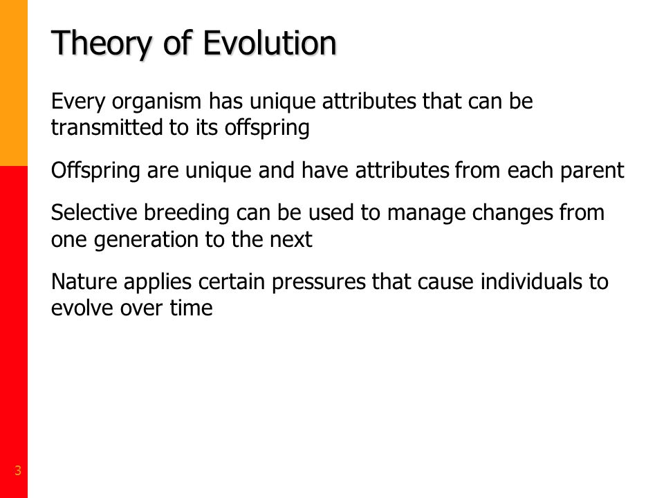 Theory of Evolution Every organism has unique attributes that can be transmitted to its offspring.