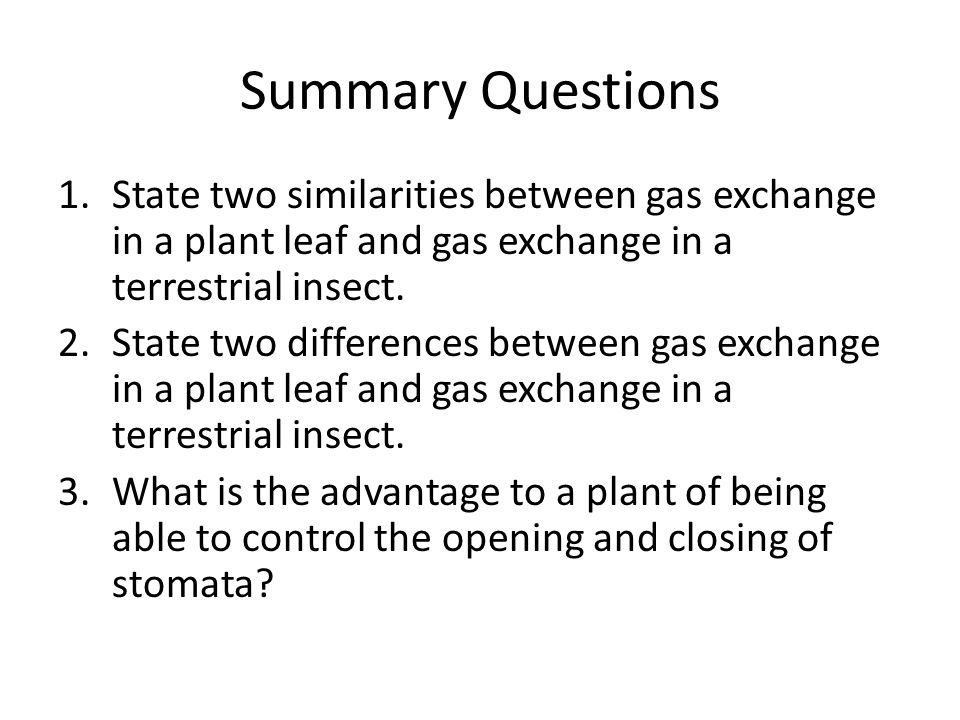Summary Questions State two similarities between gas exchange in a plant leaf and gas exchange in a terrestrial insect.