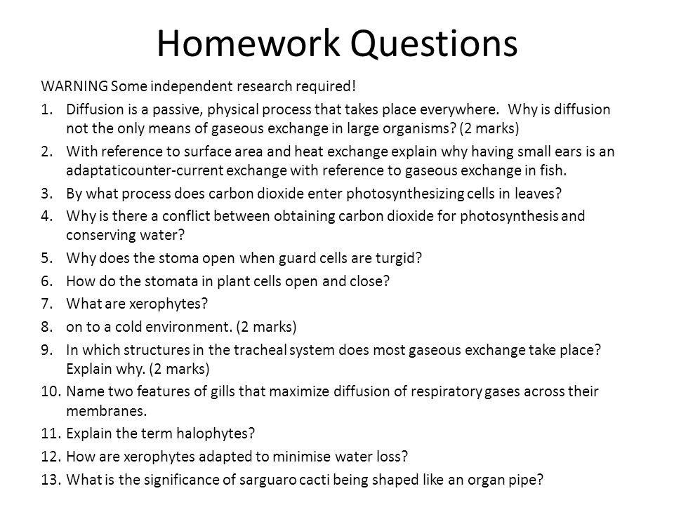 Homework Questions WARNING Some independent research required!