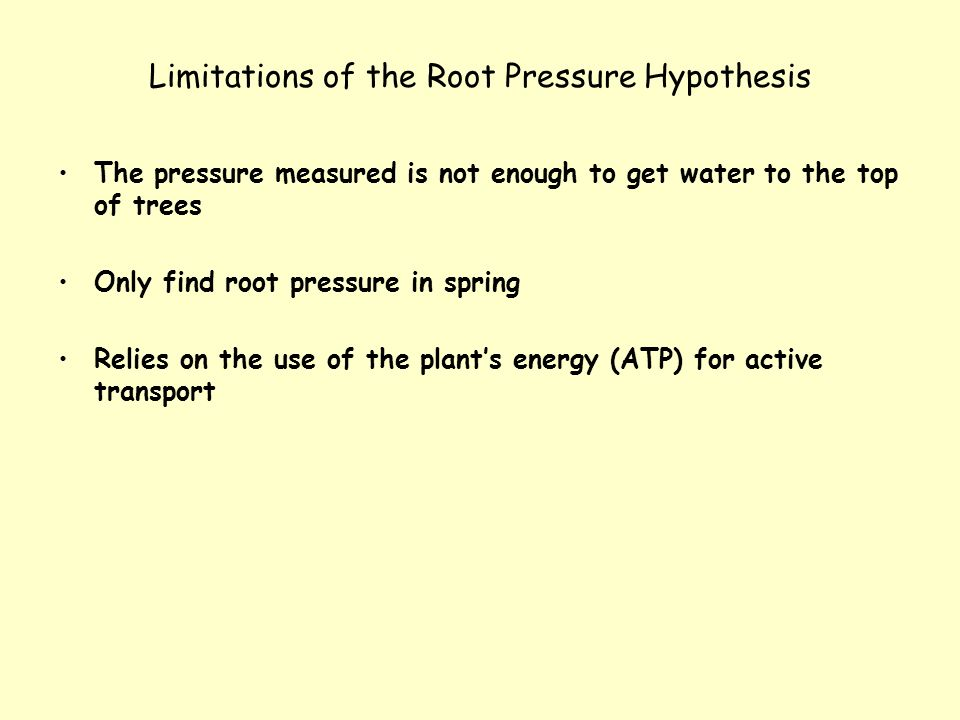 Limitations of the Root Pressure Hypothesis