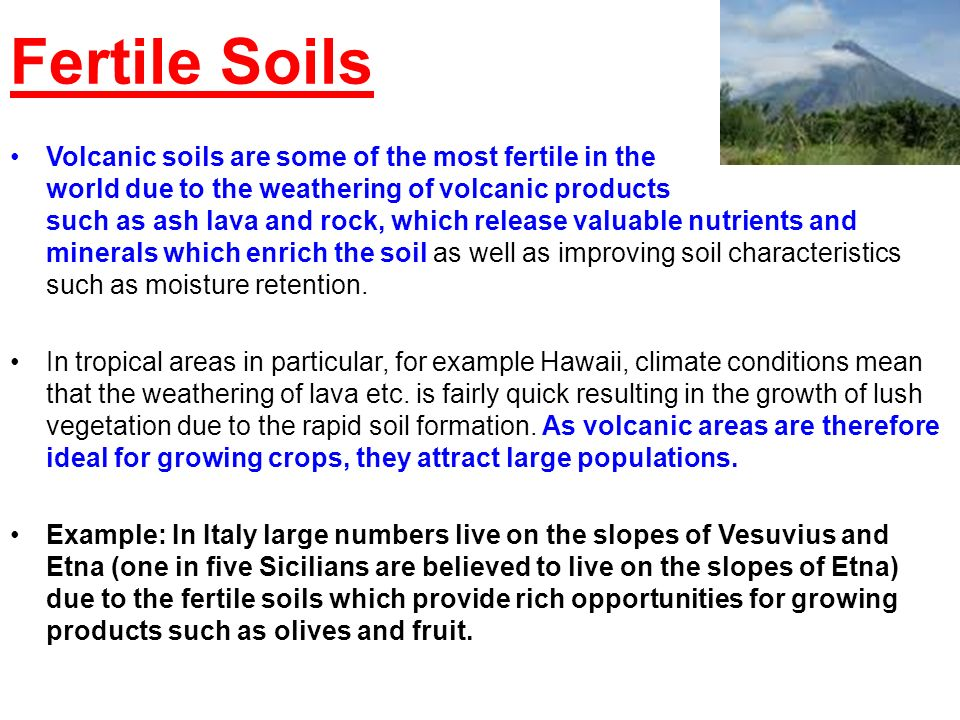 Fertile Soils