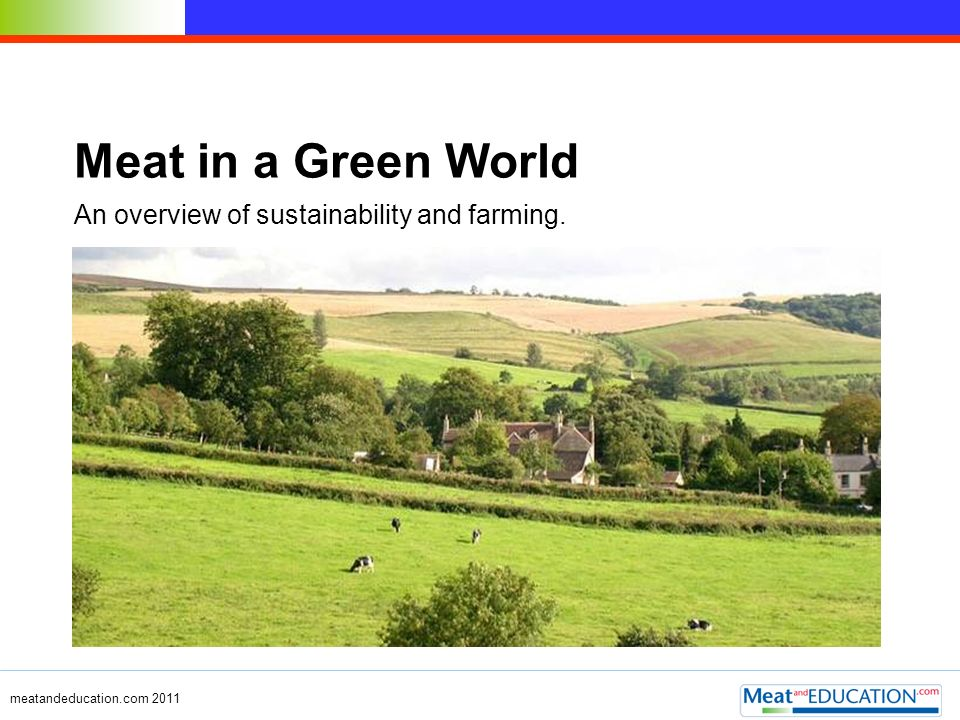 Meat in a Green World An overview of sustainability and farming.