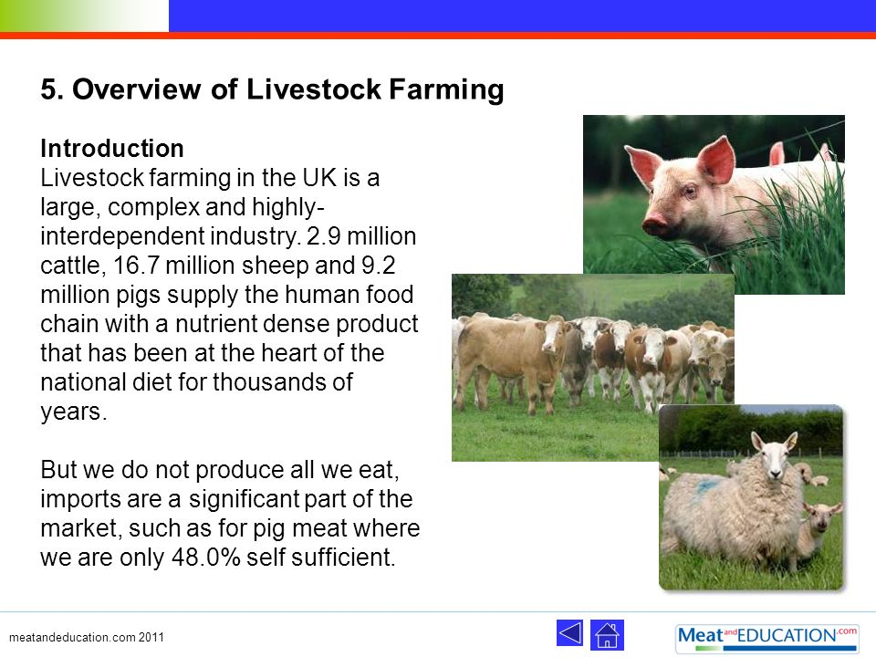 5. Overview of Livestock Farming
