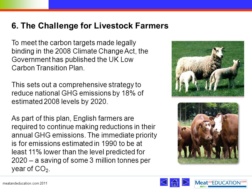 6. The Challenge for Livestock Farmers