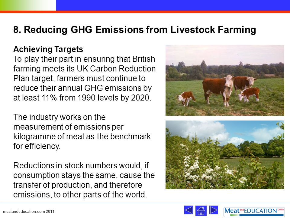 8. Reducing GHG Emissions from Livestock Farming