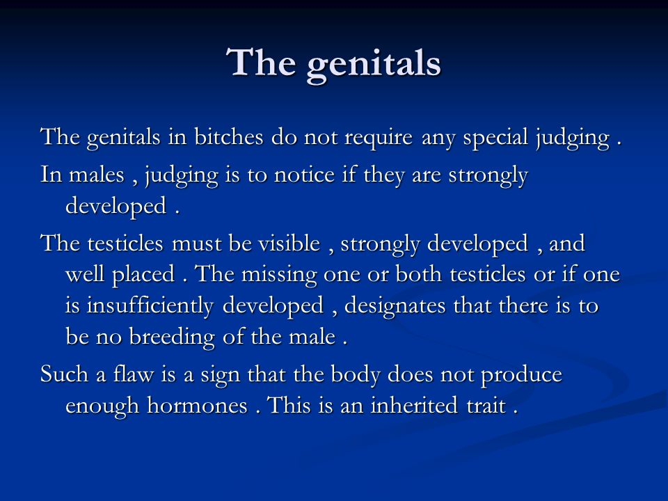 The genitals The genitals in bitches do not require any special judging . In males , judging is to notice if they are strongly developed .