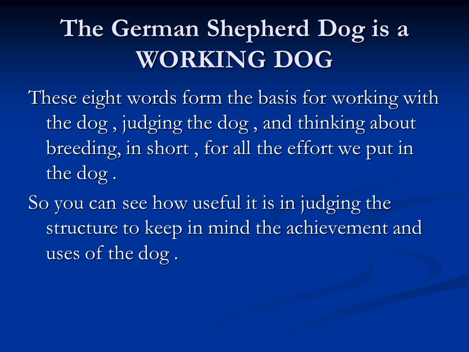 The German Shepherd Dog is a WORKING DOG