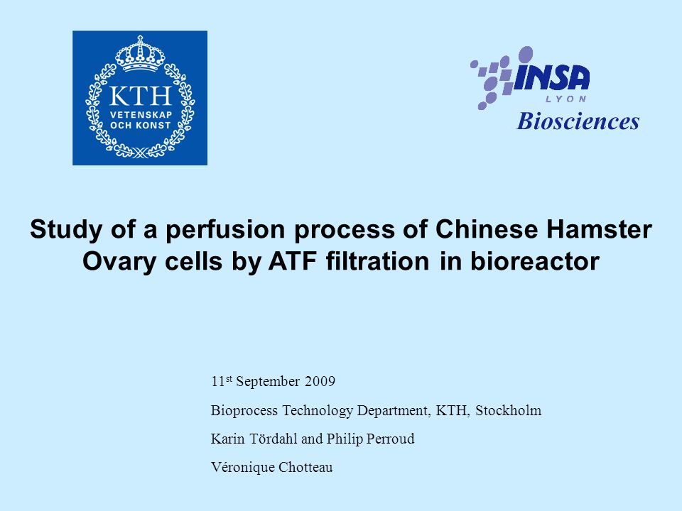 Study of a perfusion process of Chinese Hamster Ovary cells by ATF filtration in bioreactor