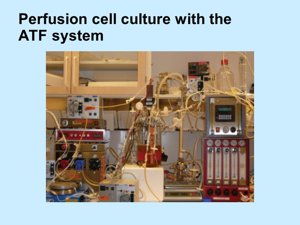 Perfusion cell culture with the ATF system