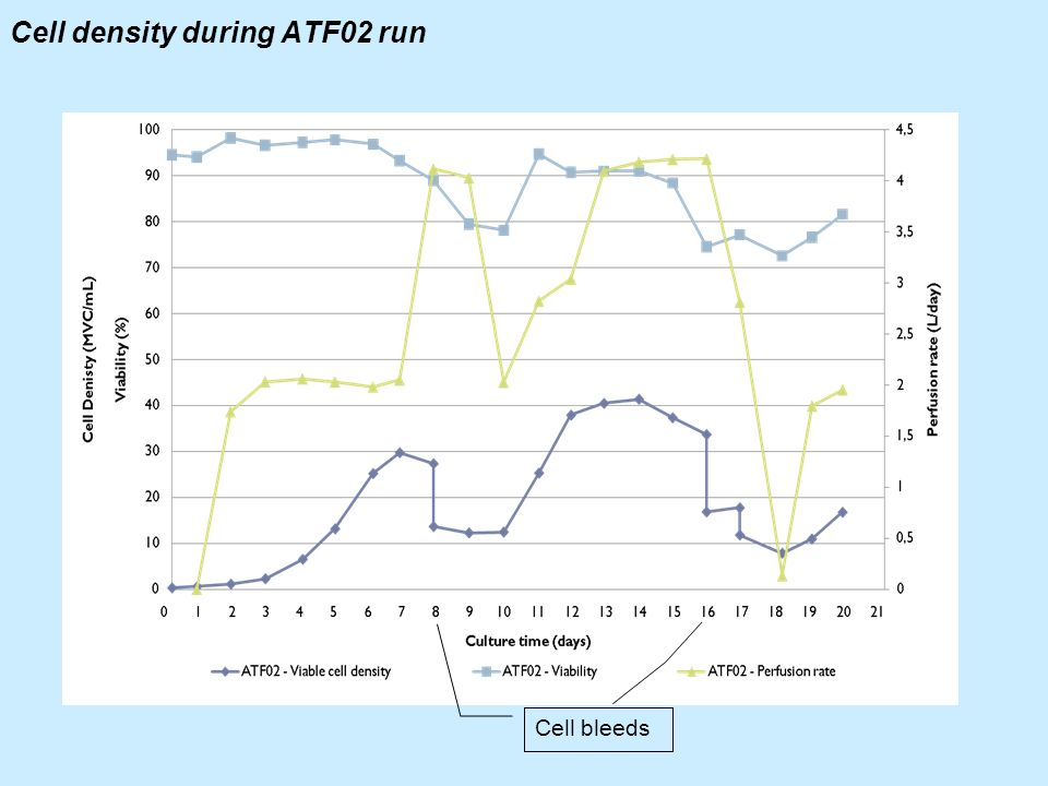 Cell density during ATF02 run