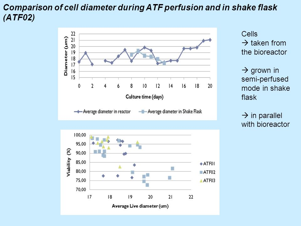 Comparison of cell diameter during ATF perfusion and in shake flask (ATF02)