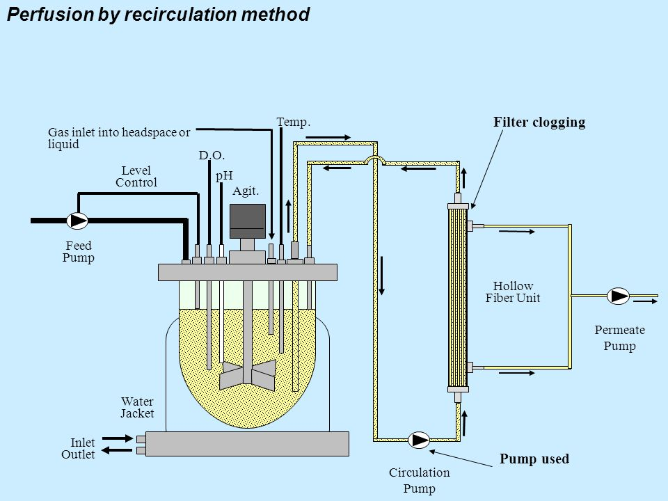 Perfusion by recirculation method