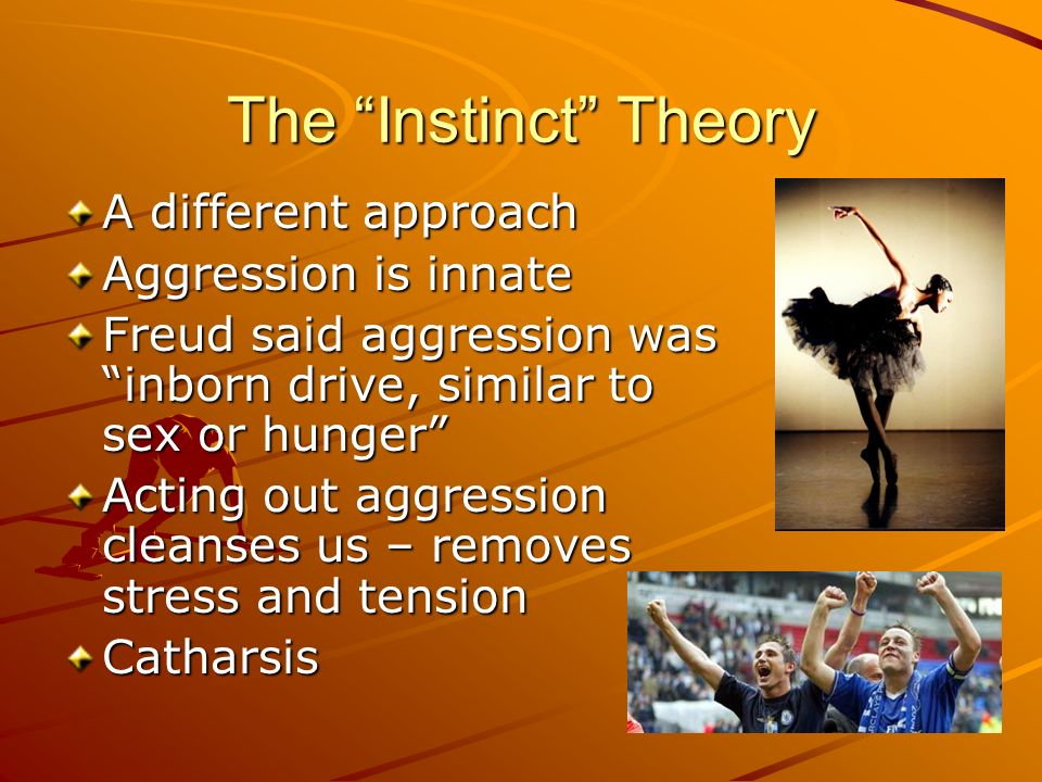 The Instinct Theory A different approach Aggression is innate