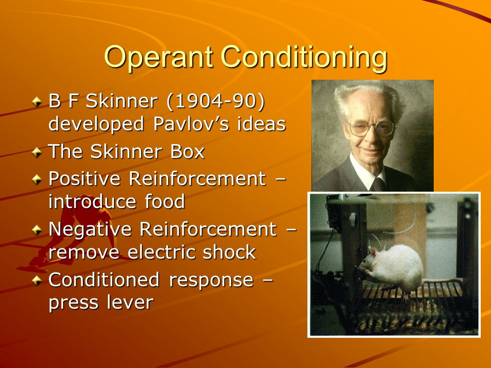 Operant Conditioning B F Skinner ( ) developed Pavlov's ideas