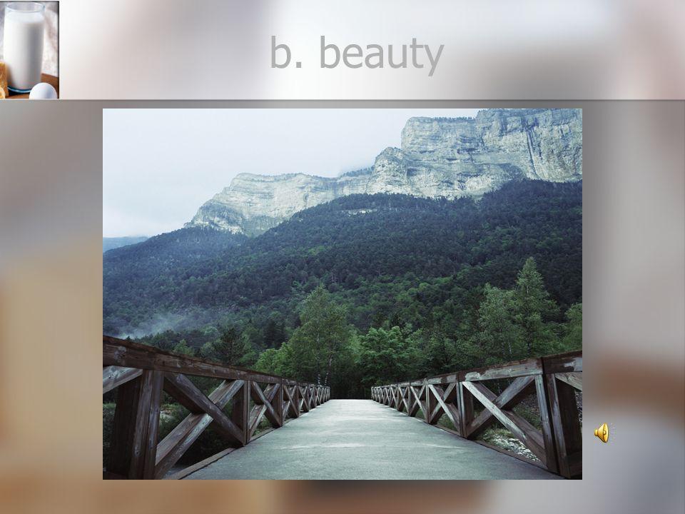 b. beauty
