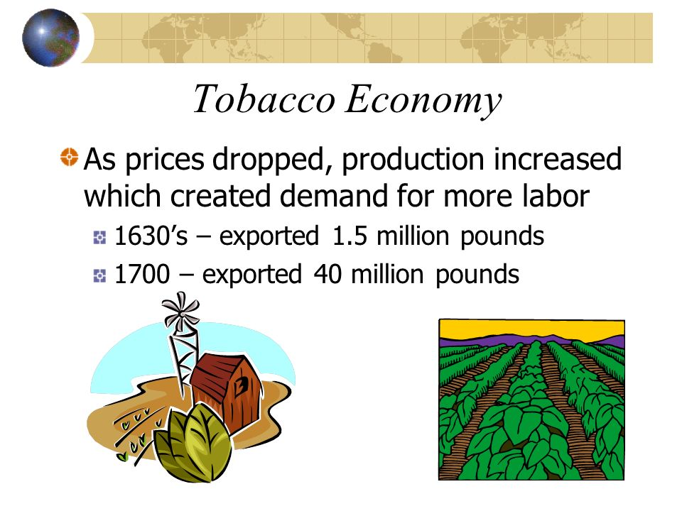 Tobacco Economy As prices dropped, production increased which created demand for more labor. 1630's – exported 1.5 million pounds.