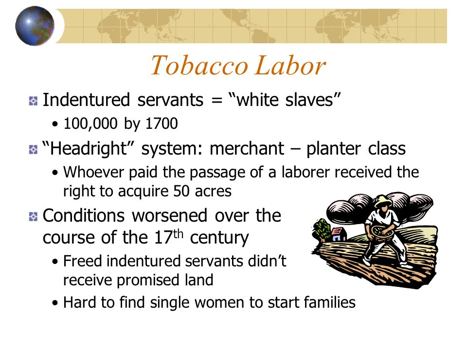 Tobacco Labor Indentured servants = white slaves