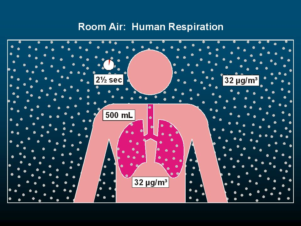 When the person inhales, the mercury vapor concentration of the air inhaled is always 32 µg/m³, regardless of the amount of air inhaled or the rate at which the air is inhaled.