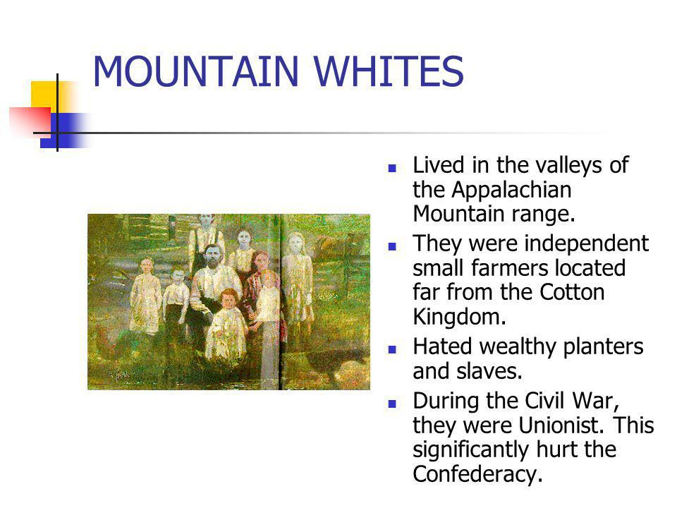 MOUNTAIN WHITES Lived in the valleys of the Appalachian Mountain range. They were independent small farmers located far from the Cotton Kingdom.
