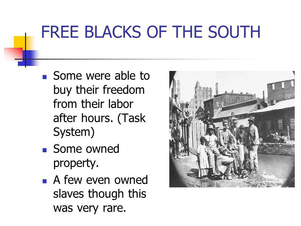FREE BLACKS OF THE SOUTH