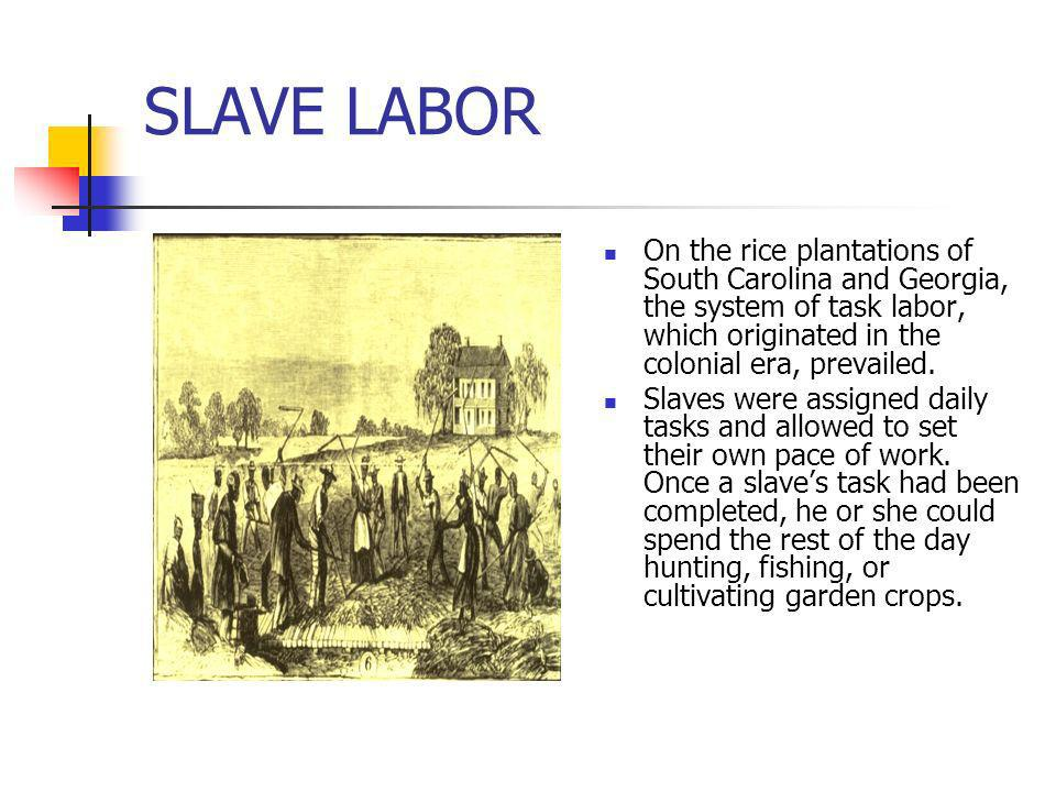 SLAVE LABOROn the rice plantations of South Carolina and Georgia, the system of task labor, which originated in the colonial era, prevailed.
