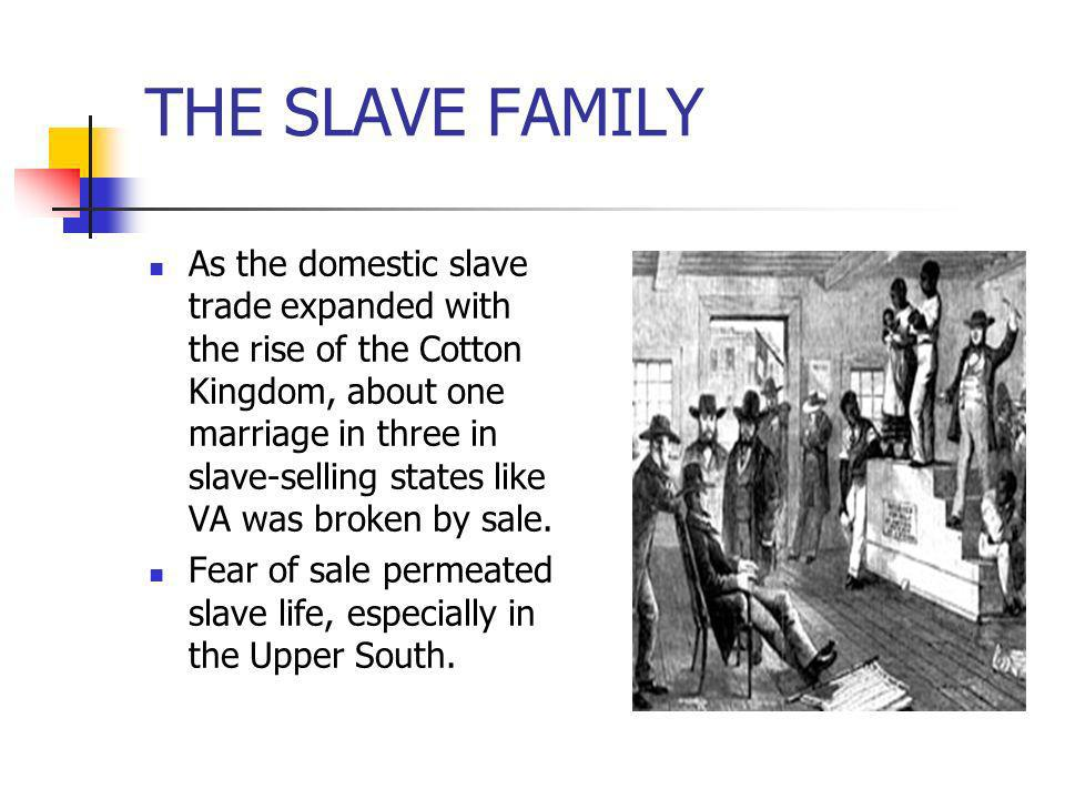 THE SLAVE FAMILY