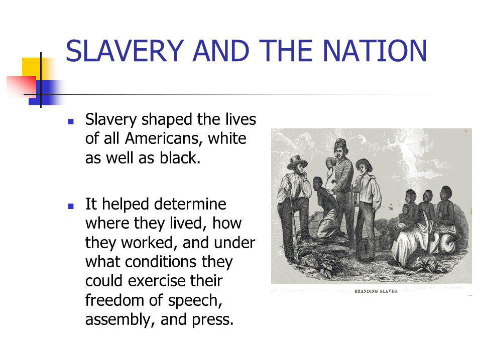SLAVERY AND THE NATION Slavery shaped the lives of all Americans, white as well as black.