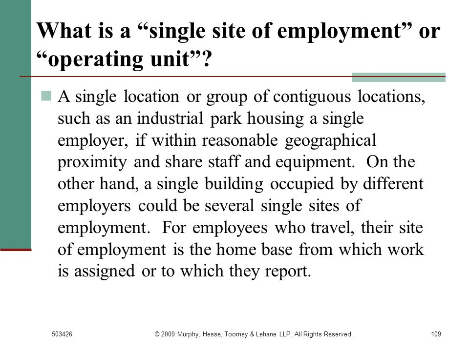 What is a single site of employment or operating unit
