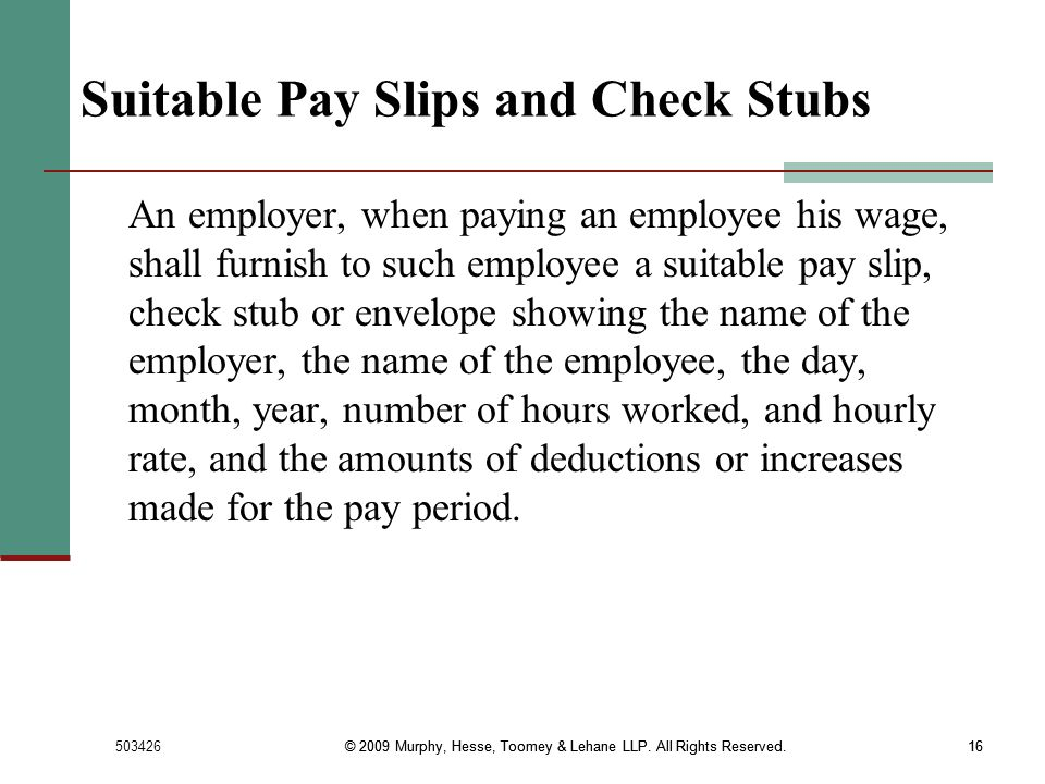 Suitable Pay Slips and Check Stubs