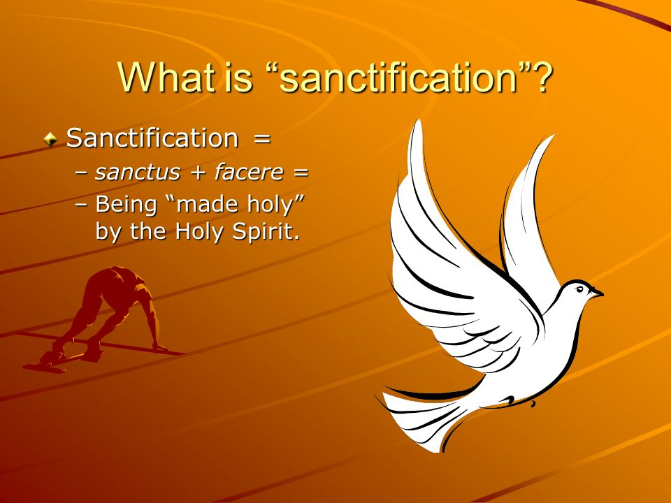 What is sanctification