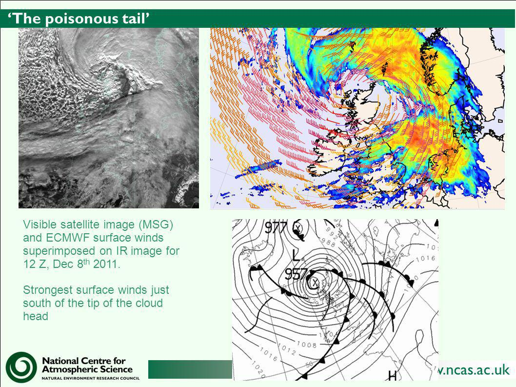 'The poisonous tail' Visible satellite image (MSG) and ECMWF surface winds superimposed on IR image for 12 Z, Dec 8th 2011.