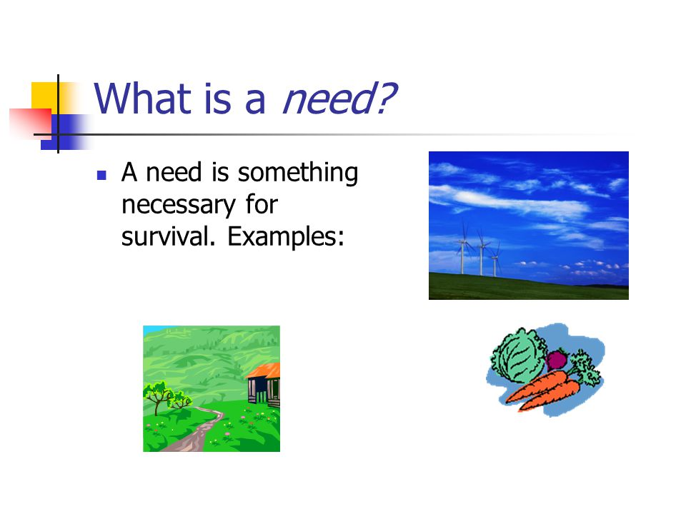 What is a need A need is something necessary for survival. Examples:
