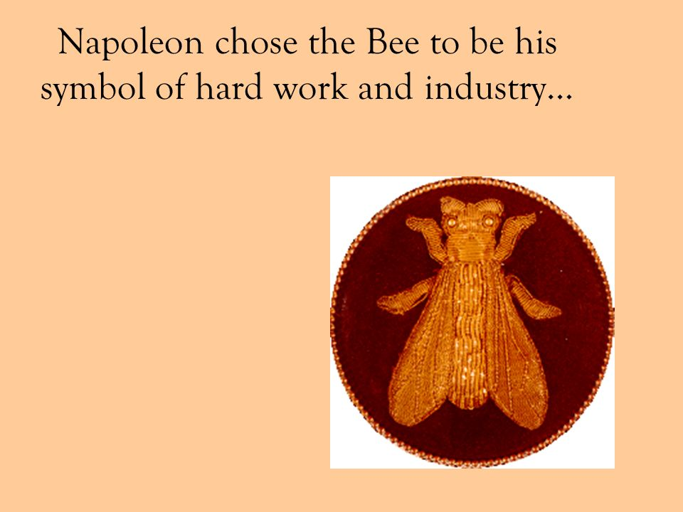 Napoleon chose the Bee to be his symbol of hard work and industry…