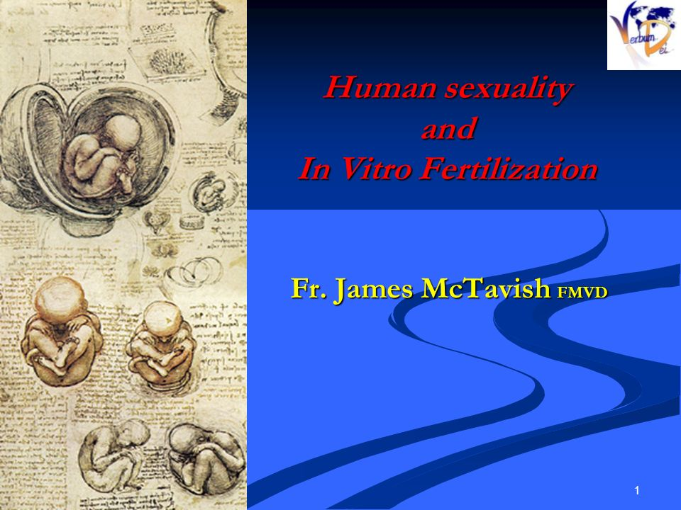 Human sexuality and In Vitro Fertilization