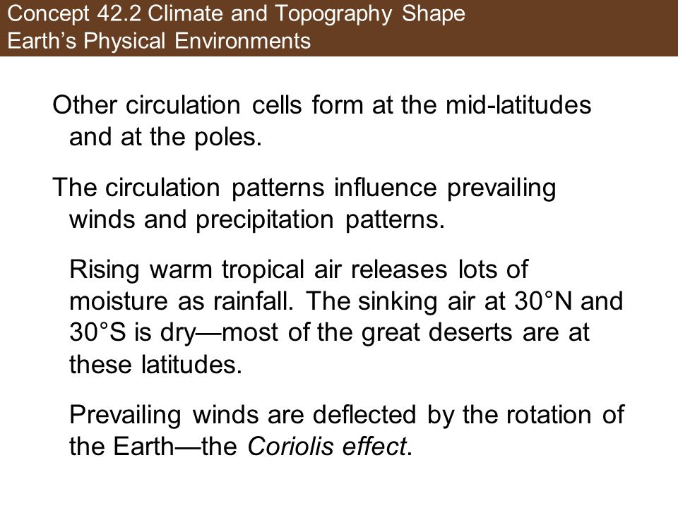 Other circulation cells form at the mid-latitudes and at the poles.