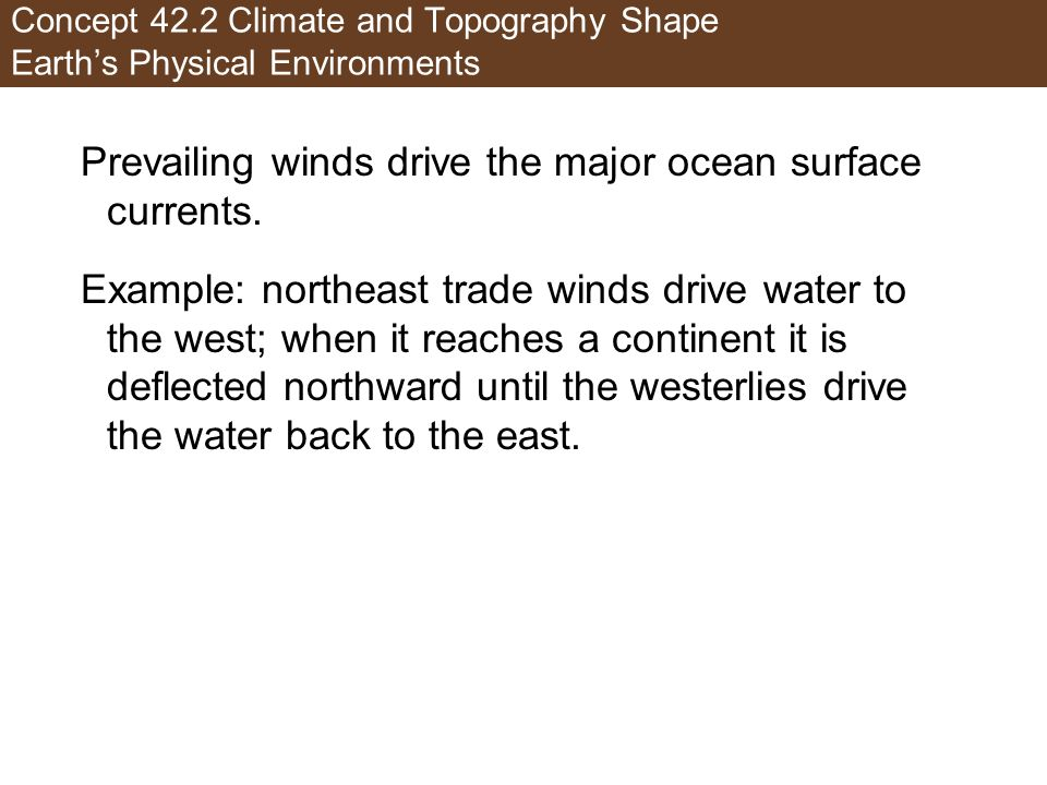 Prevailing winds drive the major ocean surface currents.